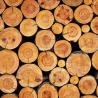 WOOD PRODUCTS FOR CLIMATE MITIGATION