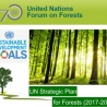 Council conclusions on the United Nations strategic plan for forests