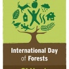 REGISTER NOW FOR THE FOREST CITY PROJECT ON 21 MARCH IN BRUSSELS