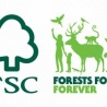 Greenpeace International leaves FSC