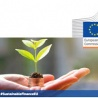 Joint statement on role of forest management in EU sustainable investment framework