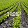 Public consultation review  state aid rules in agriculture, rural areas and forestry.